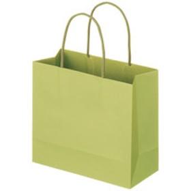 レザートーン手提袋 丸紐 グラスグリーン M 1袋(10枚入) スーパーバッグ
