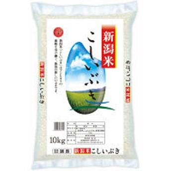 【新米】【精白米】新潟県産こしいぶき 10kg 令和元年産