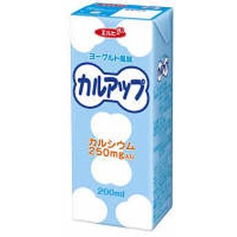 【アウトレット】エルビー カルアップ 200ml 2023 1箱(24本入)