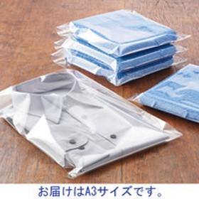 アスクルオリジナル OPP袋(テープなし) A3 透明袋 1袋(100枚入)