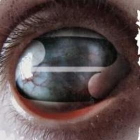 Filter フィルター / Crazy Eyes【CD】