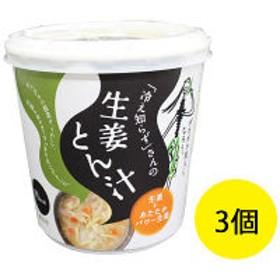 「冷え知らず」さんの生姜カップとん汁 1セット(3個) 永谷園 栄養補助食品