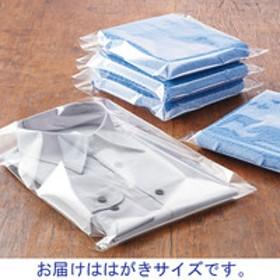 アスクルオリジナル OPP袋(テープなし) 簡易包装パック はがき用 透明袋 1袋(500枚入)