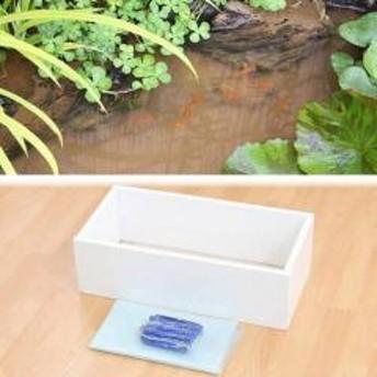 お手軽ビオトープ 池製作キット(W60×D30×H18.5cm) ホワイト
