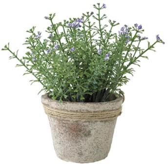 スパイスDECOR IMITATION WILD FLOWERS BLUESHOP DECO-DECOR IMITATIONグリーンTADY6040