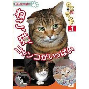 送料無料有/[DVD]/ねこ(猫)ざ ランド 1 (ねこ、猫、ニャンコがいっぱい)/趣味教養/DENA-1201