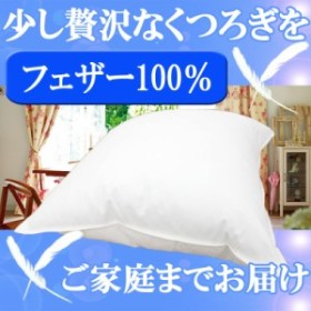 ホテルの少し贅沢なくつろぎをご家庭で♪驚くほどの質感と弾力性!フェザー100%使用ホテル仕様の羽根クッション45×45cm
