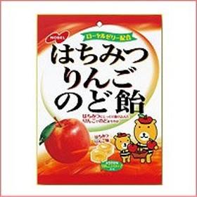 【ノーベル】 はちみつりんごのど飴fs04gm