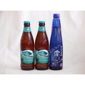 クラフトビールパーティ3本セット ハワイコナビール(ビッグウェーブ・ゴールデンエール355ml×2)日本酒スパークリング清酒(澪300ml)お歳