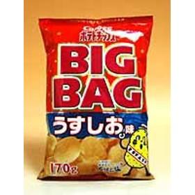 カルビー(株) ポテトチップス BIGBAGうすしお味 170g【イージャパンモール】