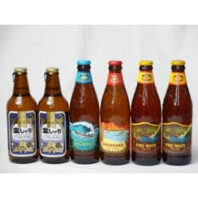 クラフトビールパーティ6本セット 金しゃちピルスナー330ml×2本 ハワイコナビールビッグウェーブ・ゴールデンエール355ml ハワイコナ
