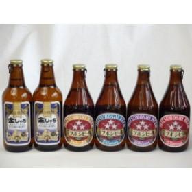 クラフトビールパーティ6本セット金しゃちピルスナー330ml ミツボシヴァイツェン330ml ミツボシウィンナスタイルラガー330ml ミツボシピ