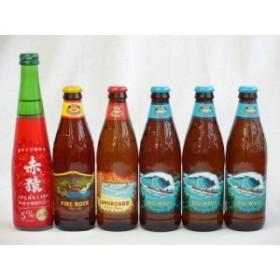 クラフトビールパーティ6本セット ハワイコナビール(ファイアーロック・ペールエール355ml ロングボードアイランドラガー355ml ビッグウ