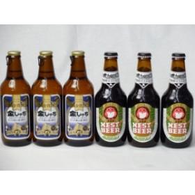クラフトビールパーティ6本セット 金しゃちピルスナー330ml×3本 常陸野ネストアンバーエール330ml×3本ギフト のし可