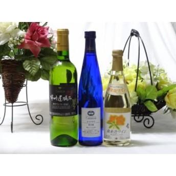 国産甘口白ワイン3本セット(ナイアガラ 遅摘み白 おたる微発泡) 国産ぶどう100%使用 500ml×2本 720ml×1本(山梨県・北海道)