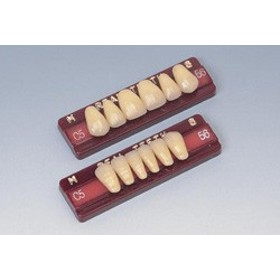 医療機器 リアル陶歯(前歯) 方型(S) 上顎 52 4 1組(6歯) 松風