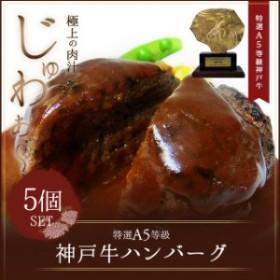 A5等級神戸牛ハンバーグ 150g×5個 (簡易包装)