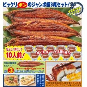 満腹!特大サイズ鰻蒲焼3尾(54049-000)