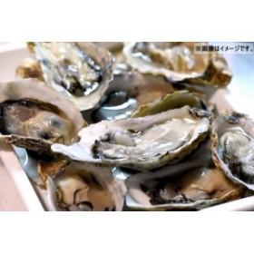生食用 殻つき冷凍生かき 10個入り 兵庫県産【貝】