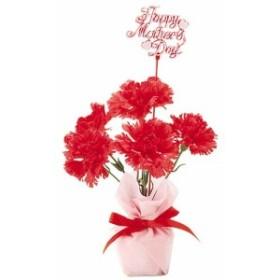 造花 観葉植物 装飾デコレーション 母の日カーネーションポット(3)  [FLGD1683]