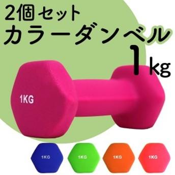 ダンベル 1kg 2個セット カラーダンベル 鉄アレイ ダンベル コンパクト おしゃれ かわいい 鉄アレイ カラフルダンベル エクササイズ フィ