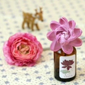 色付く香り。【Fleur de sola/ソラフラワーディフューザー】香りと共にソラの花が色づく姿を楽しめるフレグランス【_アロマオイル_ダリ・