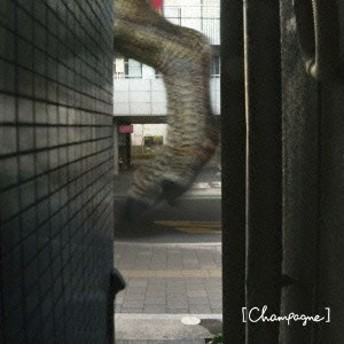 [Alexandros]/I Wanna Go To Hawaii. 【CD】