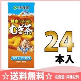 伊藤園 健康ミネラルむぎ茶 250ml 紙パック 24本入