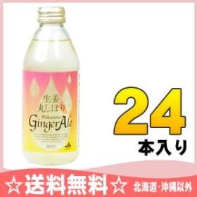JAわかやま 生姜丸しぼり ジンジャーエール 250ml 瓶 24本入