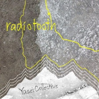 Yasei Collective/radiotooth 【CD】