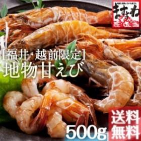 無添加 国産 越前がらえび500g 約30匹 送料無料※冷凍  えび エビ 海老 ガラエビ 刺身 海鮮 魚介 海の幸