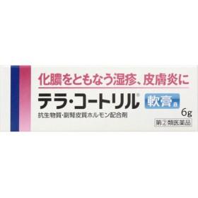 武田コンシューマーヘルスケア テラ・コートリル軟膏a 6g