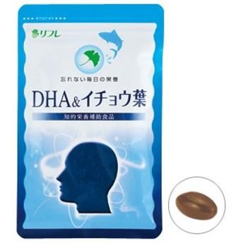 メール便OKDHA&イチョウ葉/サプリメント 健康維持 ヘルシーライフ 生活習慣 健康食品 知的栄養素