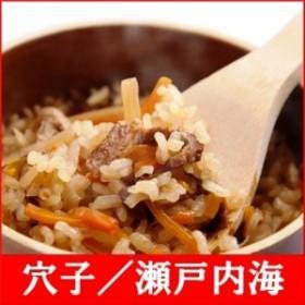 (釜付セット)全国名選陶器本釜めし(穴子/瀬戸内海) 釜飯セット 釜飯の素 早炊米