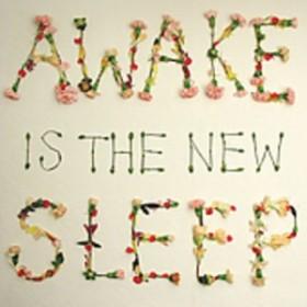 BEN LEE / AWAKE IS THE NEW SLEEP (輸入盤CD) (ベン・リー)
