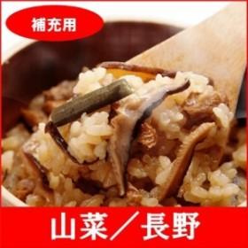 (補充用)全国名選陶器本釜めし(山菜/長野) 釜飯セット 釜飯の素 早炊米