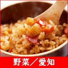 (釜付セット)全国名選陶器本釜めし(野菜/愛知) 釜飯セット 釜飯の素 早炊米