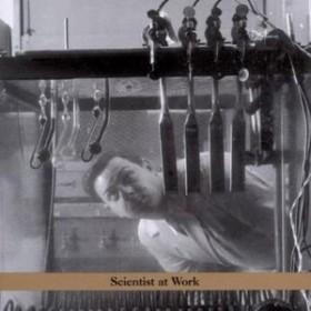 Frank London / Scientist at Work (輸入盤CD) (フランク・ロンドン)