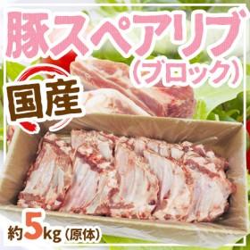 【送料無料】国産豚スペアリブ ブロック 約5kg 原体