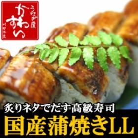 業務用 国産 うなぎ蒲焼き 200g×50本 ウナギ 鰻 鰻の蒲焼き 蒲焼き 店舗 店頭 大容量 卸 卸売
