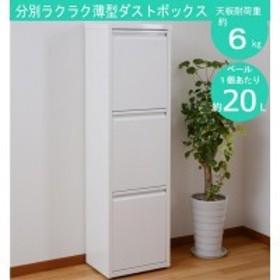 ダストボックス(3分別) ホワイト DS-77
