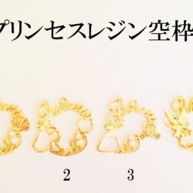 【2】プリンセスレジン空枠 3個
