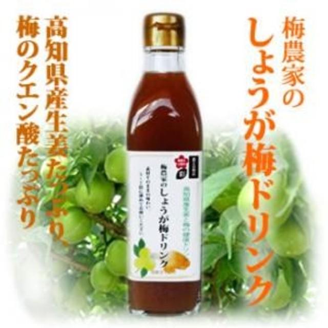 梅農家のしょうが梅シロップ 300ml 家庭用 希釈タイプ ジュース 濃縮 生姜