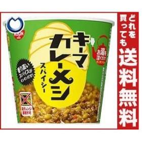 【送料無料】日清食品 日清 キーマカレーメシ スパイシー 105g×6個入