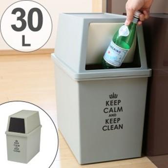ゴミ箱 分別 積み重ねゴミ箱 スリム 30リットル ( ごみ箱 ふた付き ダストボックス スタッキング 30L 30l ふた付 前開き 蓋付き プ