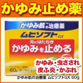 かゆみ肌の治療薬 ムヒソフトGX 60g  [皮膚の薬/かゆみ/虫さされ/皮ふ炎/かぶれ/じんましん/しっしん/しもやけ/あせも]【第3類医薬品】・
