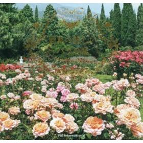 [書籍]/世界の美しいバラの庭/パイインターナショナル/NEOBK-2218922