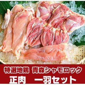 【送料無料】青森シャモロック 正肉1羽セット 約1.0kg 簡易パッケージ[営業日10時までのご注文で当日発送]