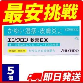 1個あたり1490円 湿疹 かぶれ 軟膏 エンクロン軟膏EX 12g 5個セット  指定第2類医薬品