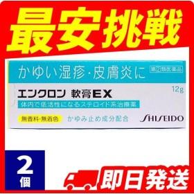 1個あたり1490円 湿疹 かぶれ 軟膏 エンクロン軟膏EX 12g 2個セット  指定第2類医薬品
